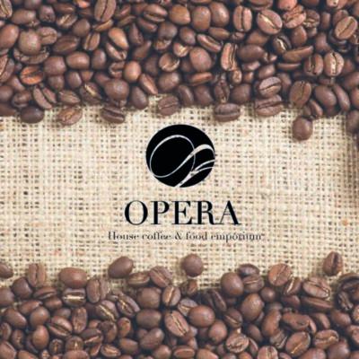 Logo creato per Opera Brescia